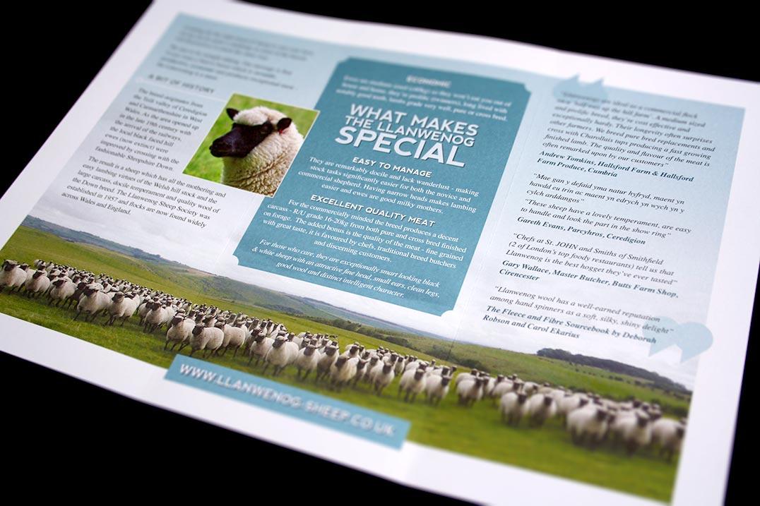 Llanwenog leaflet